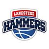 landstede-hammers
